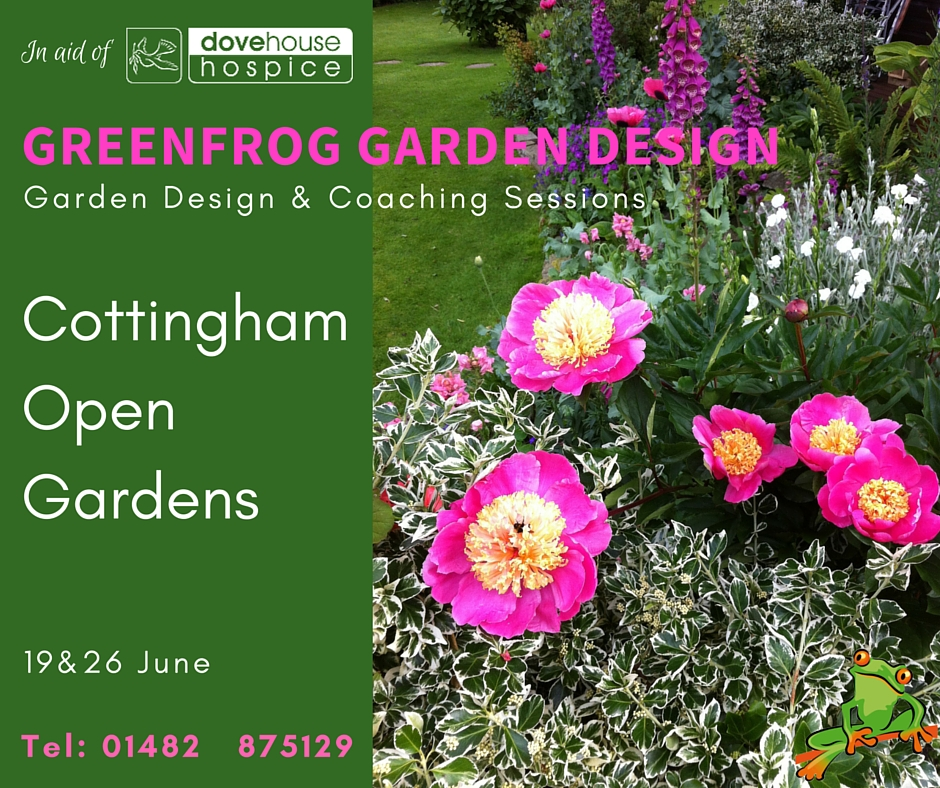 Greenfrog garden design