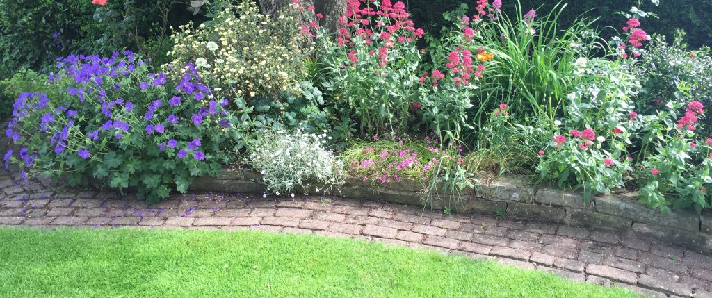planting bed with path edging