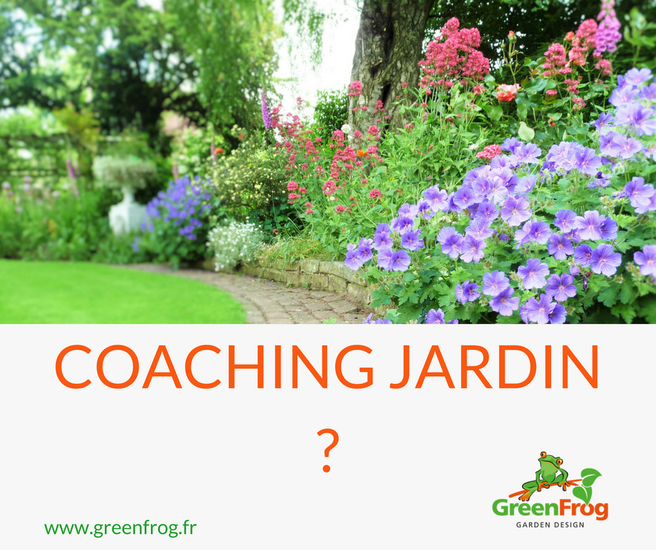 Coaching-jardin-greenfrog-1